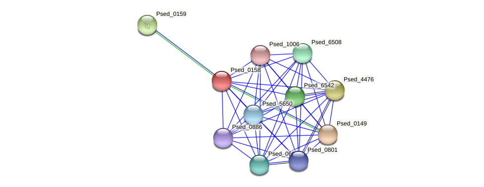 Psed_0158 protein (Pseudonocardia dioxanivorans) - STRING interaction network