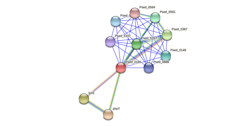 Psed_0165 protein (Pseudonocardia dioxanivorans) - STRING interaction network