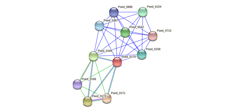 Psed_0170 protein (Pseudonocardia dioxanivorans) - STRING interaction network