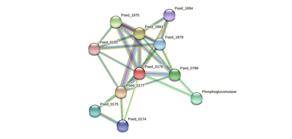 Psed_0176 protein (Pseudonocardia dioxanivorans) - STRING interaction network