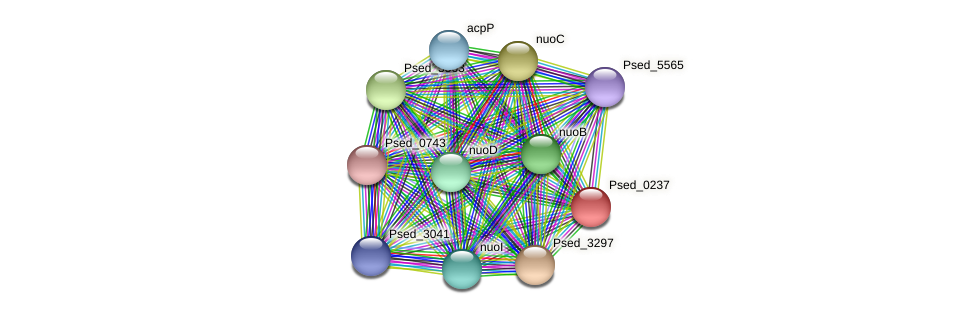 Psed_0237 protein (Pseudonocardia dioxanivorans) - STRING interaction network