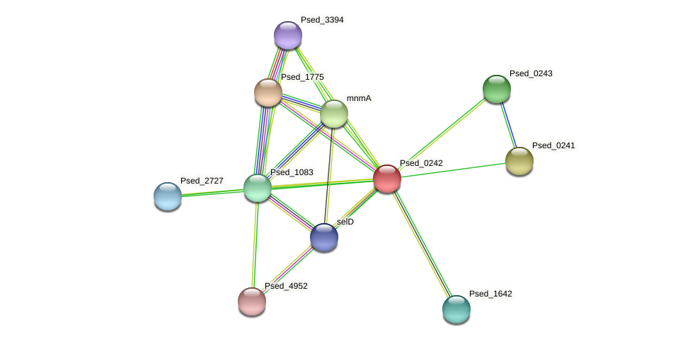 Psed_0242 protein (Pseudonocardia dioxanivorans) - STRING interaction network