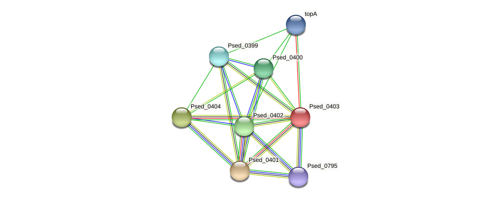Psed_0403 protein (Pseudonocardia dioxanivorans) - STRING interaction network