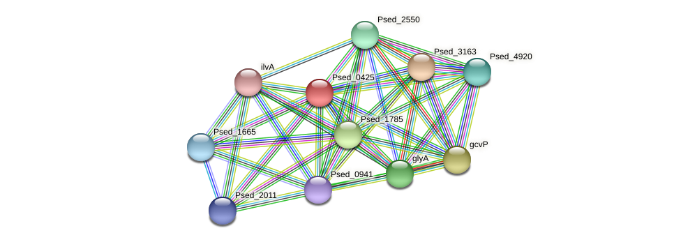 Psed_0425 protein (Pseudonocardia dioxanivorans) - STRING interaction network
