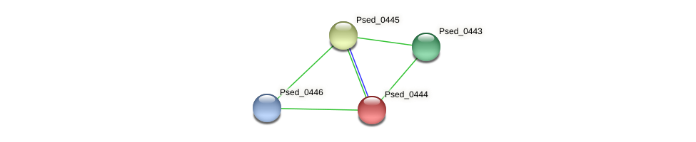 Psed_0444 protein (Pseudonocardia dioxanivorans) - STRING interaction network