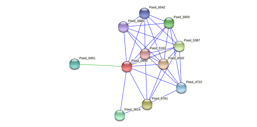 Psed_0450 protein (Pseudonocardia dioxanivorans) - STRING interaction network