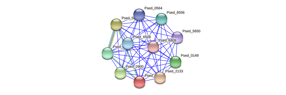 Psed_0636 protein (Pseudonocardia dioxanivorans) - STRING interaction network