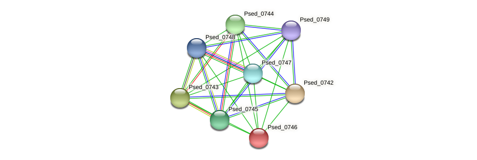 Psed_0746 protein (Pseudonocardia dioxanivorans) - STRING interaction network