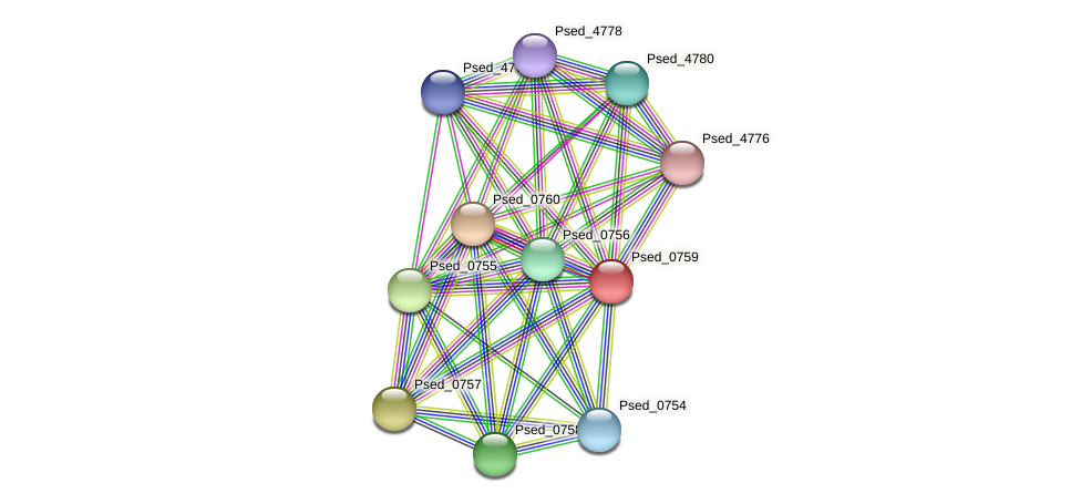 Psed_0759 protein (Pseudonocardia dioxanivorans) - STRING interaction network