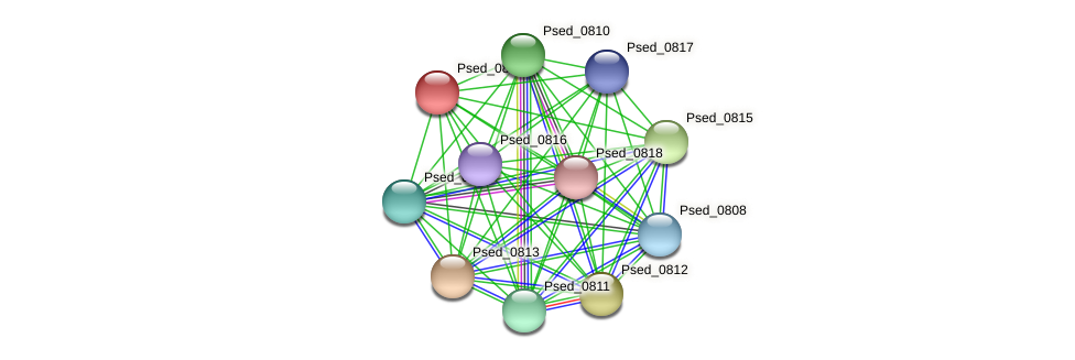 Psed_0814 protein (Pseudonocardia dioxanivorans) - STRING interaction network