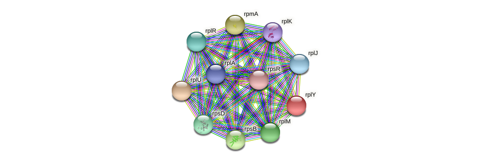 ctc protein (Pseudonocardia dioxanivorans) - STRING interaction network