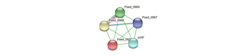 Psed_0970 protein (Pseudonocardia dioxanivorans) - STRING interaction network