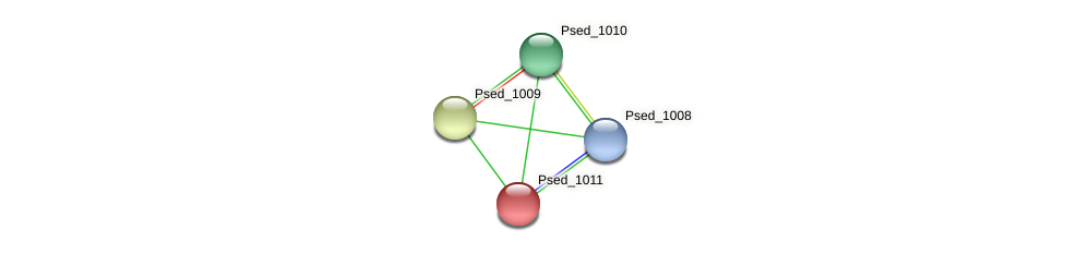 Psed_1011 protein (Pseudonocardia dioxanivorans) - STRING interaction network