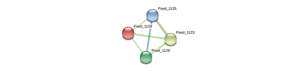 Psed_1124 protein (Pseudonocardia dioxanivorans) - STRING interaction network