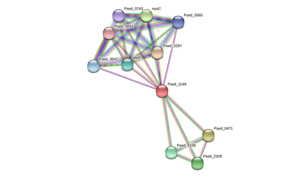 Psed_1149 protein (Pseudonocardia dioxanivorans) - STRING interaction network