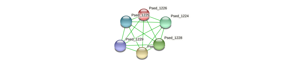Psed_1226 protein (Pseudonocardia dioxanivorans) - STRING interaction network