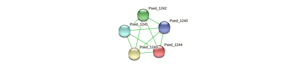 Psed_1244 protein (Pseudonocardia dioxanivorans) - STRING interaction network