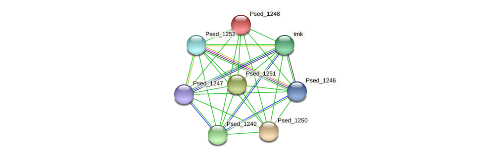 Psed_1248 protein (Pseudonocardia dioxanivorans) - STRING interaction network