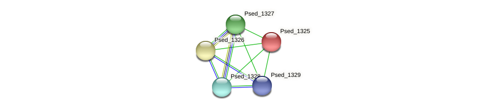 Psed_1325 protein (Pseudonocardia dioxanivorans) - STRING interaction network