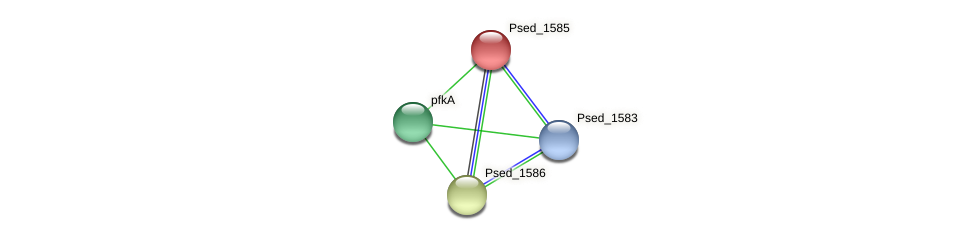 Psed_1585 protein (Pseudonocardia dioxanivorans) - STRING interaction network