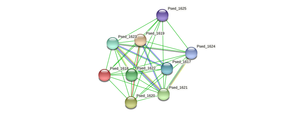 Psed_1618 protein (Pseudonocardia dioxanivorans) - STRING interaction network