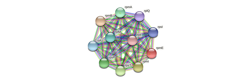 rpmE protein (Pseudonocardia dioxanivorans) - STRING interaction network
