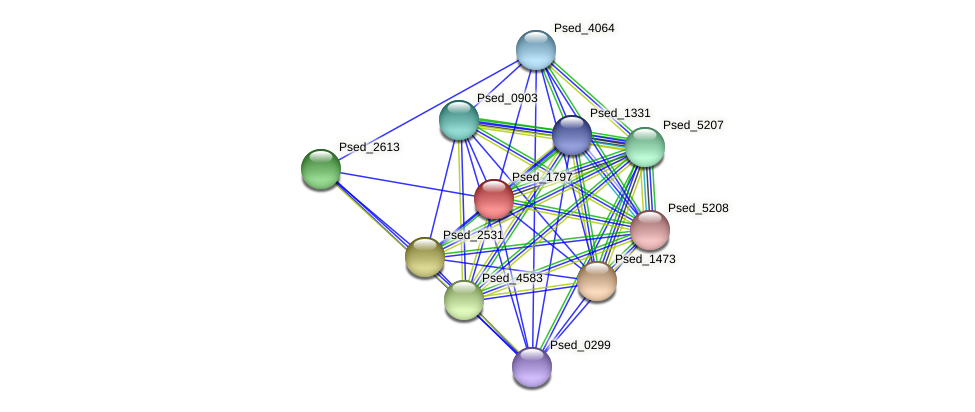 Psed_1797 protein (Pseudonocardia dioxanivorans) - STRING interaction network