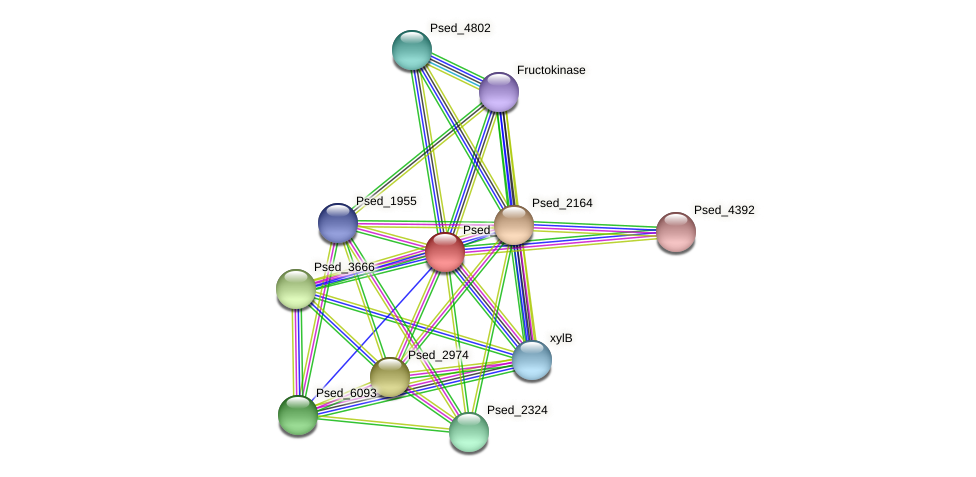 Psed_1802 protein (Pseudonocardia dioxanivorans) - STRING interaction network
