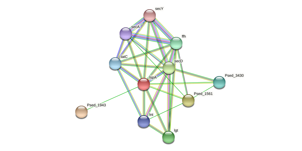 lspA protein (Pseudonocardia dioxanivorans) - STRING interaction network