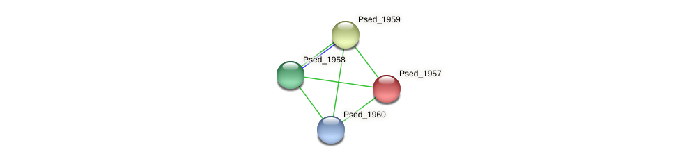 Psed_1957 protein (Pseudonocardia dioxanivorans) - STRING interaction network