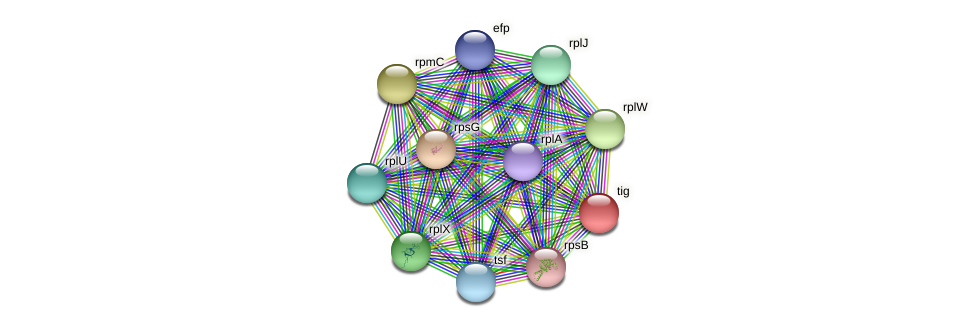 tig protein (Pseudonocardia dioxanivorans) - STRING interaction network