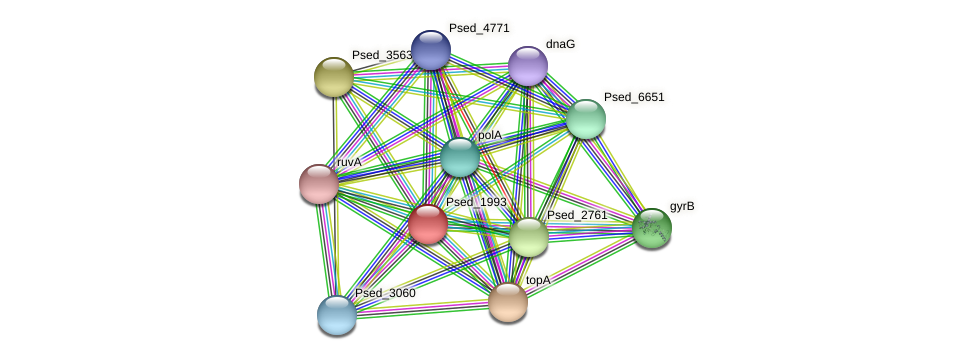 Psed_1993 protein (Pseudonocardia dioxanivorans) - STRING interaction network