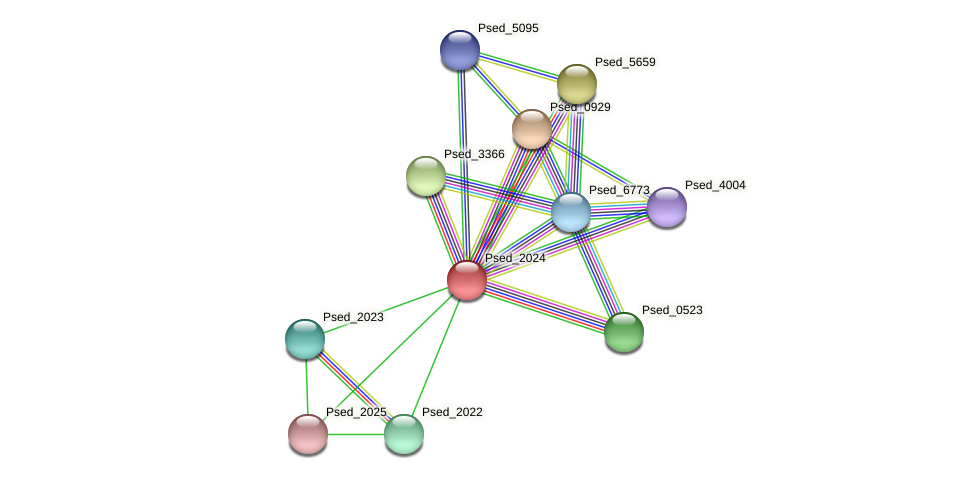 Psed_2024 protein (Pseudonocardia dioxanivorans) - STRING interaction network