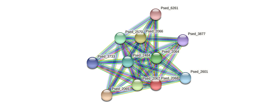 Psed_2068 protein (Pseudonocardia dioxanivorans) - STRING interaction network