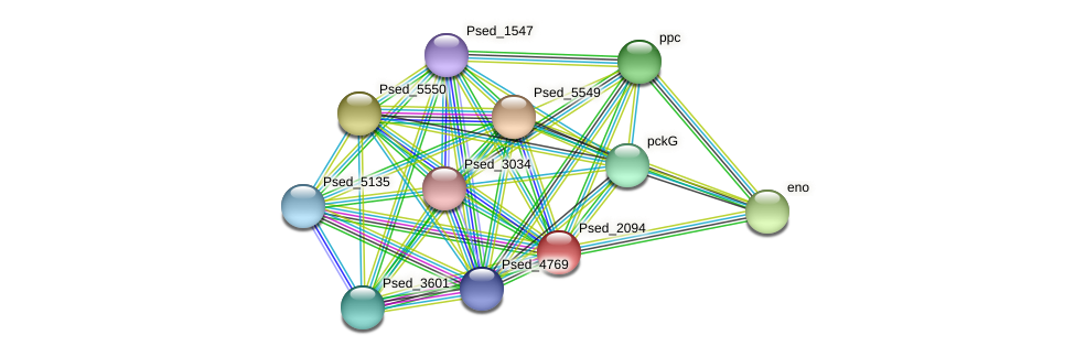 Psed_2094 protein (Pseudonocardia dioxanivorans) - STRING interaction network