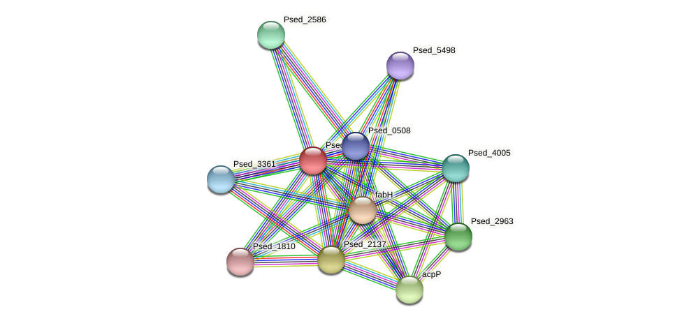 Psed_2134 protein (Pseudonocardia dioxanivorans) - STRING interaction network
