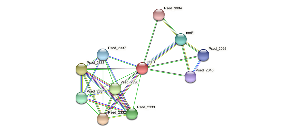 nnrD protein (Pseudonocardia dioxanivorans) - STRING interaction network