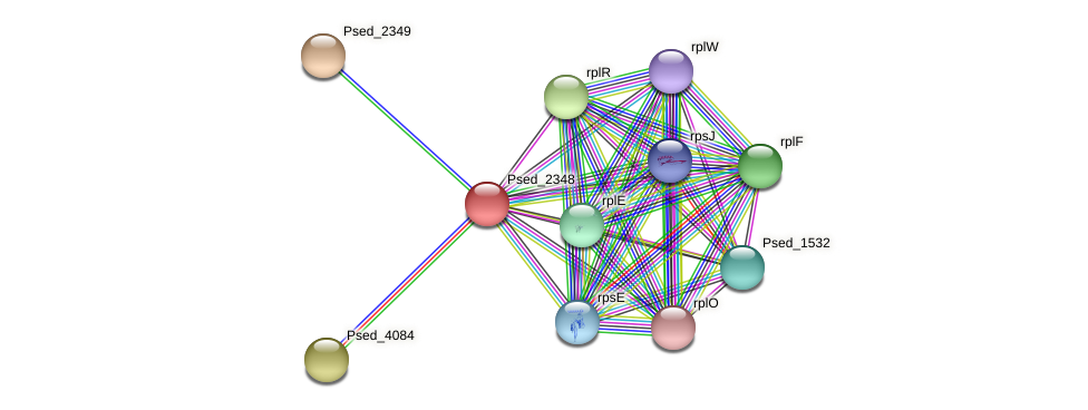 Psed_2348 protein (Pseudonocardia dioxanivorans) - STRING interaction network