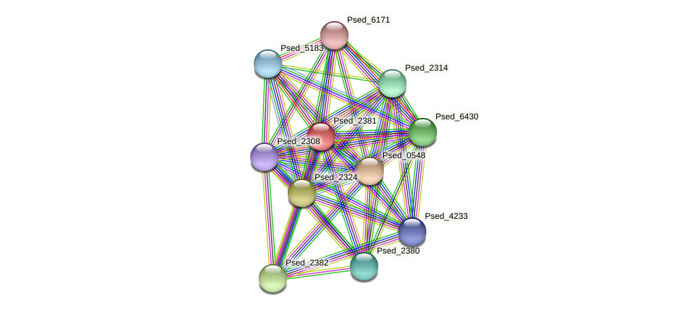 Psed_2381 protein (Pseudonocardia dioxanivorans) - STRING interaction network