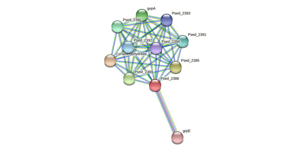 Psed_2388 protein (Pseudonocardia dioxanivorans) - STRING interaction network