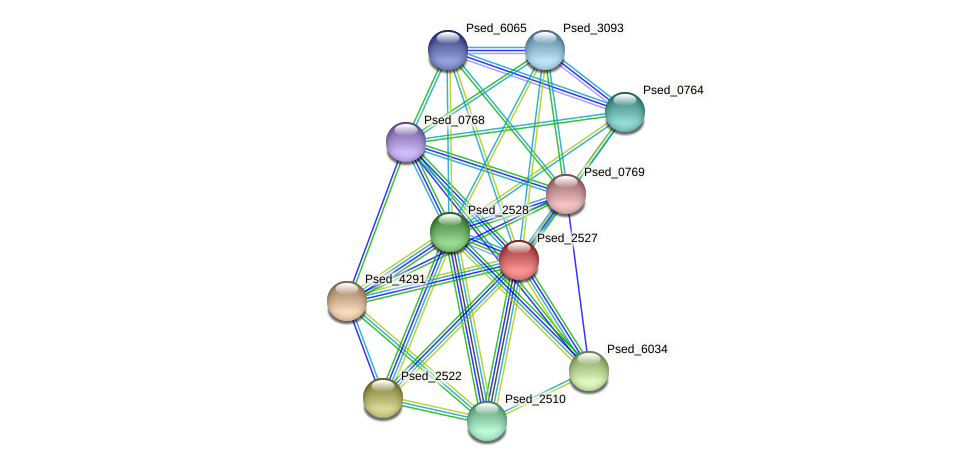 Psed_2527 protein (Pseudonocardia dioxanivorans) - STRING interaction network