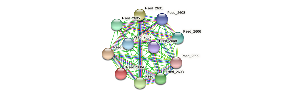 Psed_2604 protein (Pseudonocardia dioxanivorans) - STRING interaction network