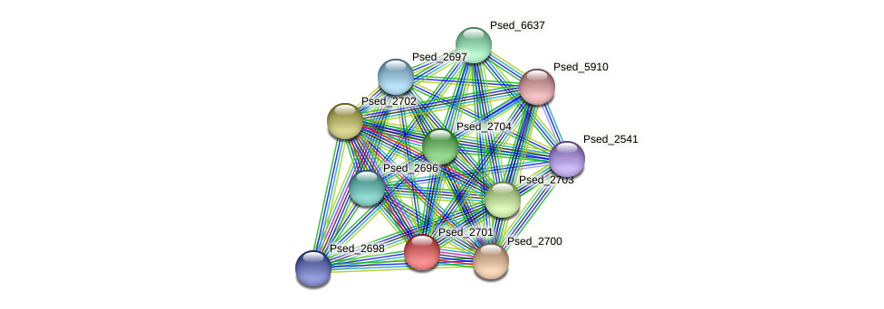 Psed_2701 protein (Pseudonocardia dioxanivorans) - STRING interaction network
