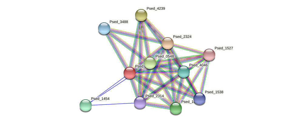 Psed_2710 protein (Pseudonocardia dioxanivorans) - STRING interaction network