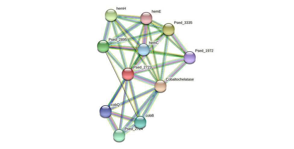 Psed_2723 protein (Pseudonocardia dioxanivorans) - STRING interaction network