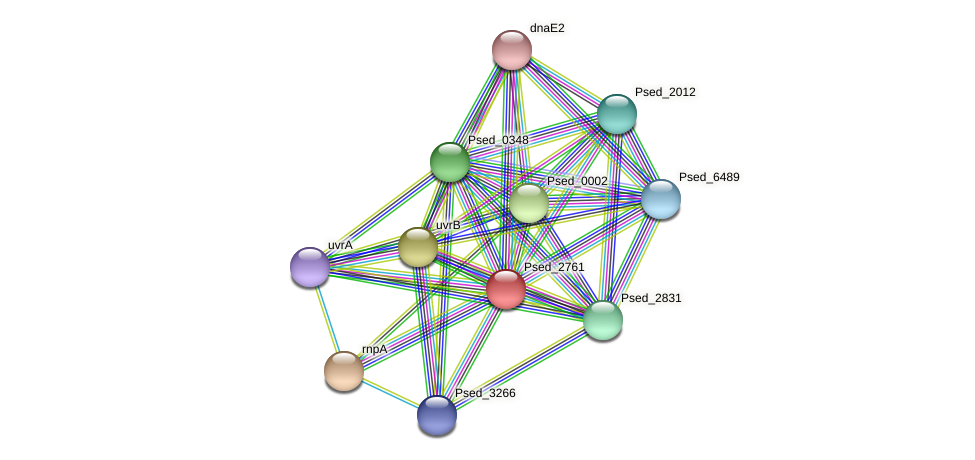Psed_2761 protein (Pseudonocardia dioxanivorans) - STRING interaction network