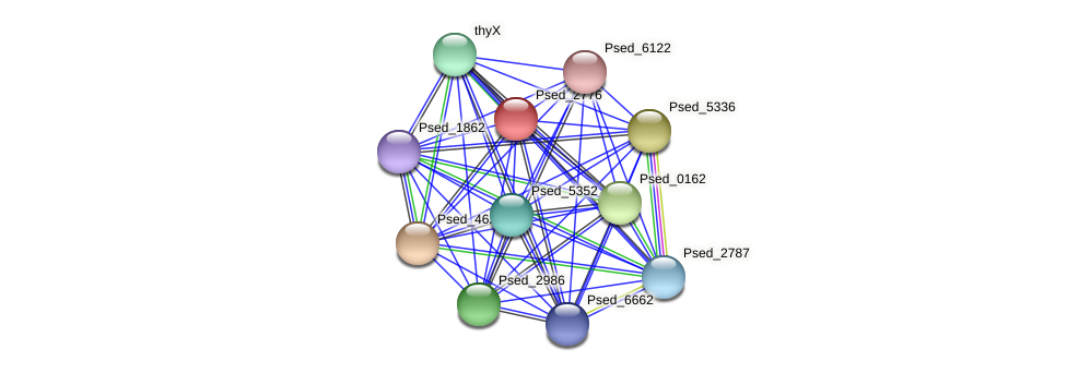 Psed_2776 protein (Pseudonocardia dioxanivorans) - STRING interaction network
