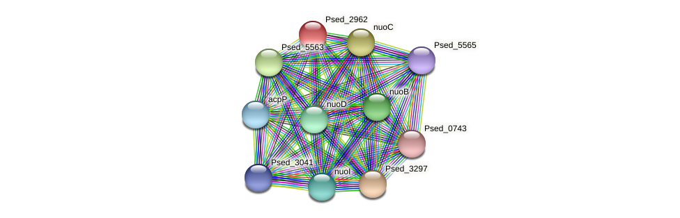 Psed_2962 protein (Pseudonocardia dioxanivorans) - STRING interaction network
