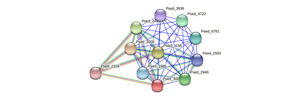 Psed_3008 protein (Pseudonocardia dioxanivorans) - STRING interaction network