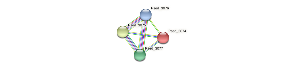 Psed_3074 protein (Pseudonocardia dioxanivorans) - STRING interaction network